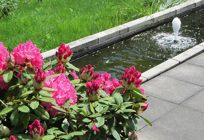 Tag der Offenen Gartenpforte Recklinghausen Wasserbecken